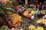 Carnaval de Madère - Funchal