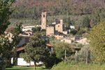 village toscan camelias